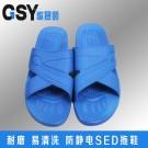 蓝色交叉拖鞋